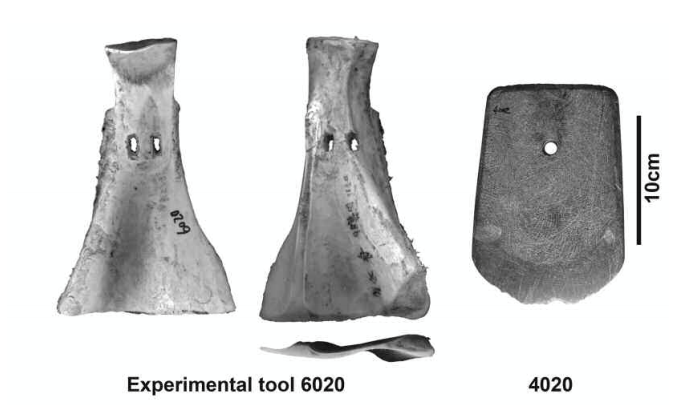"Neolithic Stone Tools From Xie, Liye, Steven L. Kuhn, Guoping Sun, John W. Olsen, Yunfei Zheng, Pin Ding, and Ye Zhao. 2015. ""Labor Costs for Prehistoric Earthwork Construction: Experimental and Archaeological Insights from the Lower Yangzi Basin, China."" American Antiquity 80/1: 67–88."